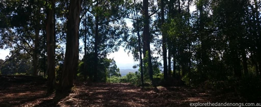 View from Falls Road across to Yarra Valley