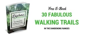 Free E-Book Walking Tracks in the Dandenong Ranges
