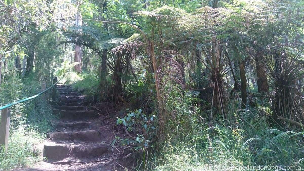 Olinda Falls Walking Track