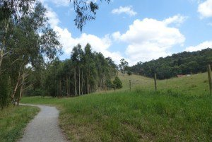 Birdsland Reserve Belgrave south