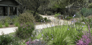 Kawarra Gardens