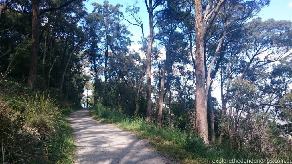 Kyeema Walking Track to Burkes Lookout, Mt Dandenong