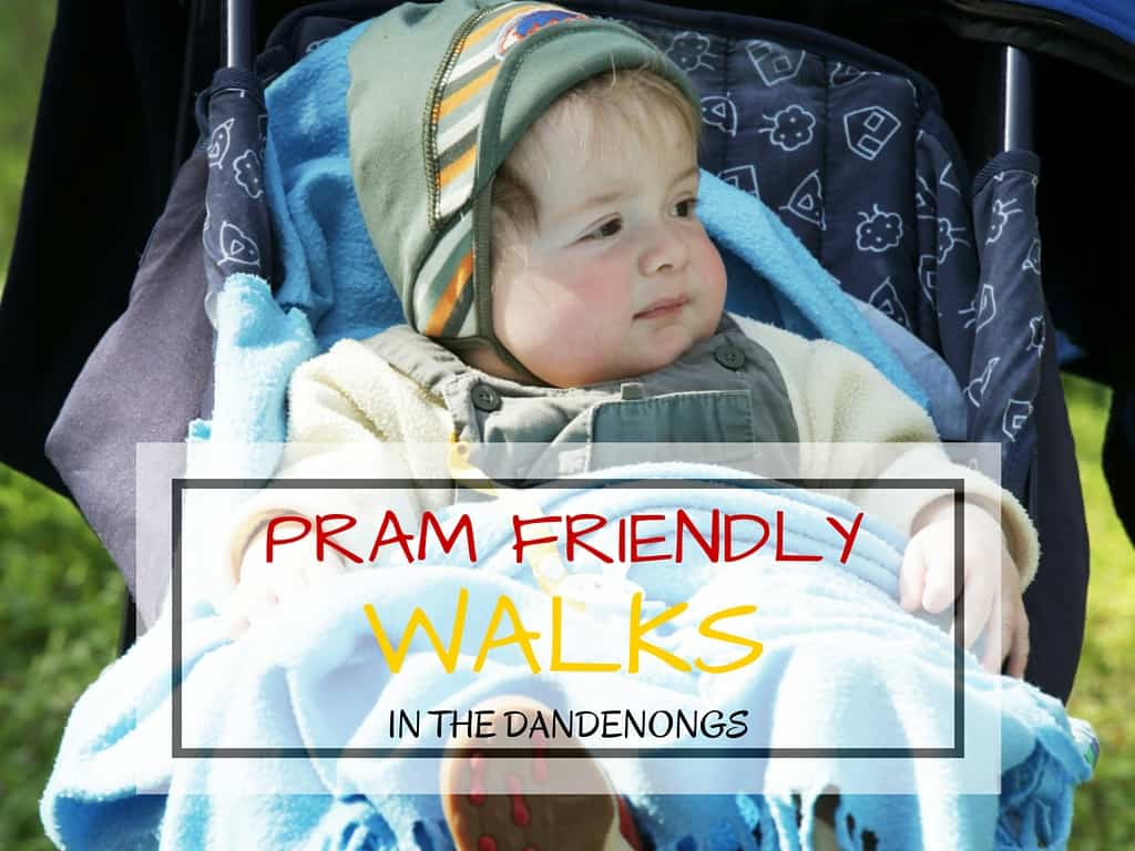Pram-Friendly Walks in the Dandenongs