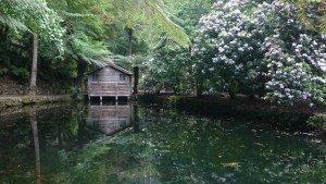 Alfred Nicholas Gardens