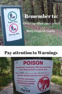 Dog Walking Rules Dandenong Ranges