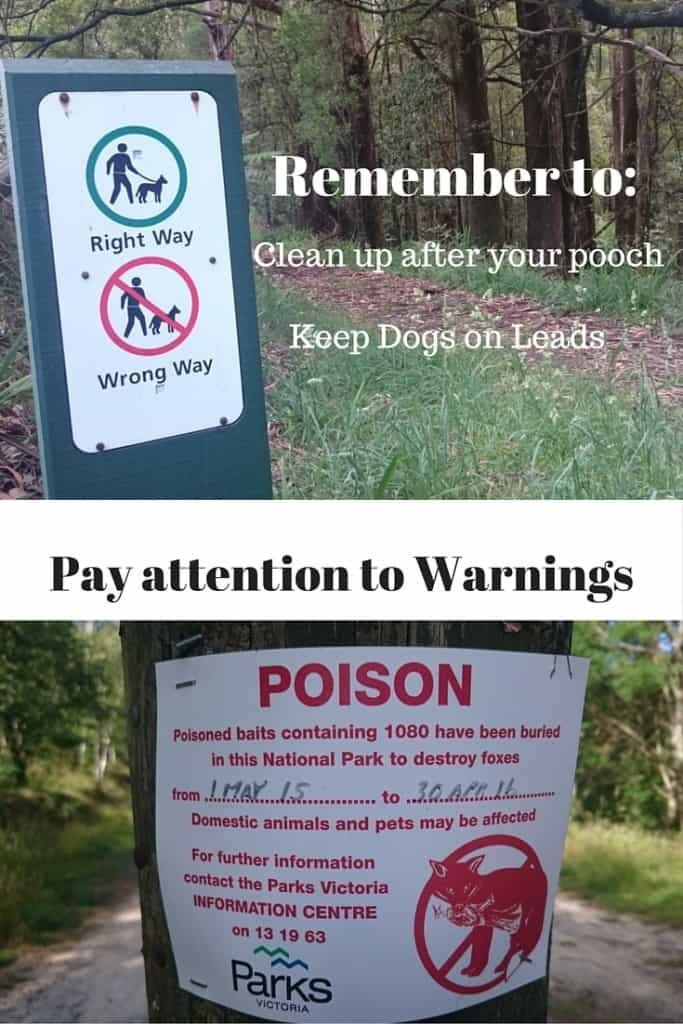 Dog-friendly walks. Dog Walking Rules Dandenong Ranges