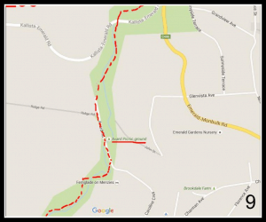 Walking Track Map - Sassafras to Emerald