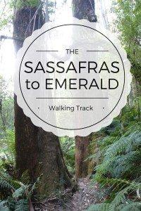 SASSAFRAS TO EMERALD