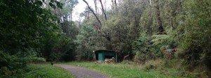 Red Dog Hut on Mathias Track
