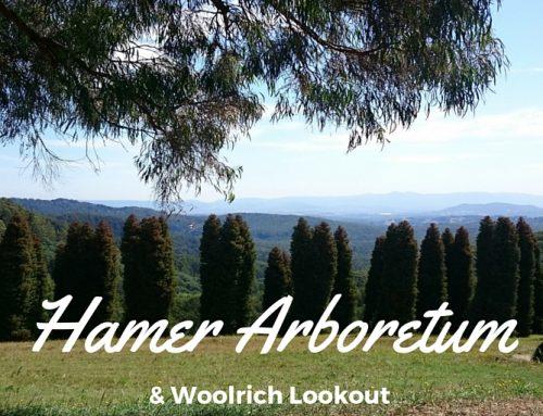 Hamer Arboretum