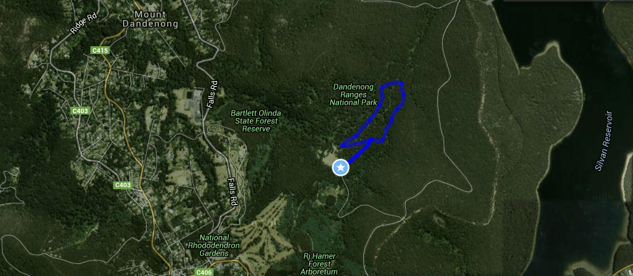 Valley Picnic Ground - Eagle Nest Loop Track