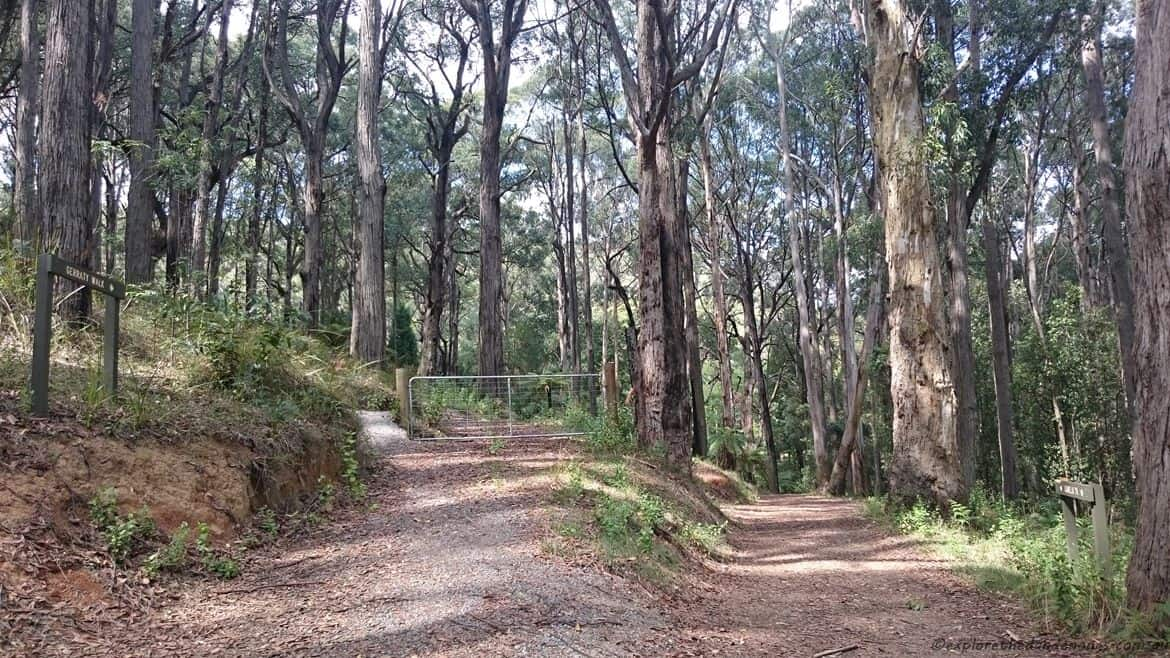 Doongalla Homestead History - Walking Tracks