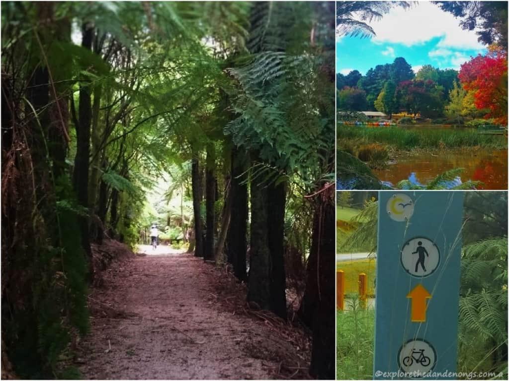 Emerald Lake Park, Dandenong Ranges
