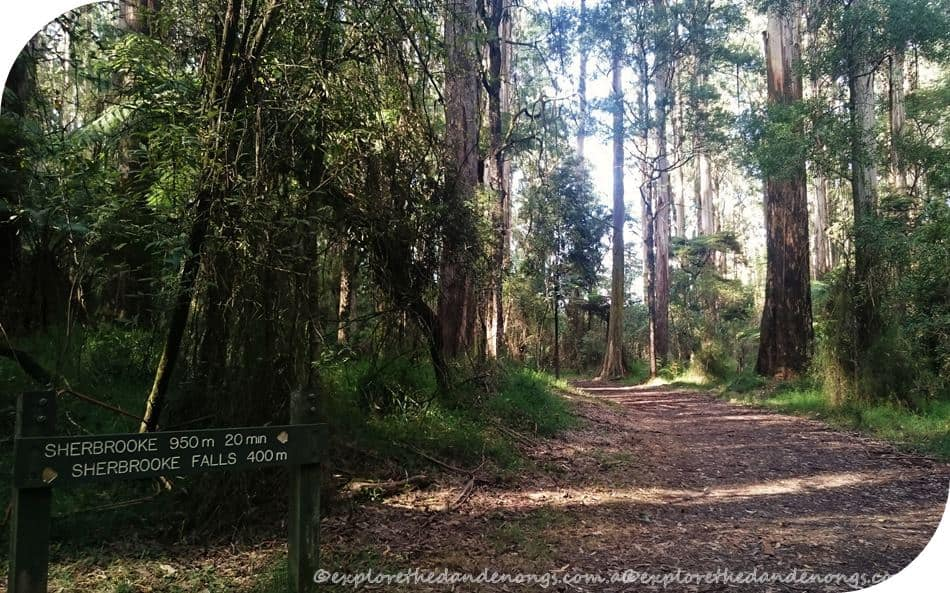 Monument Track Walk (12) (Copy) (Copy)