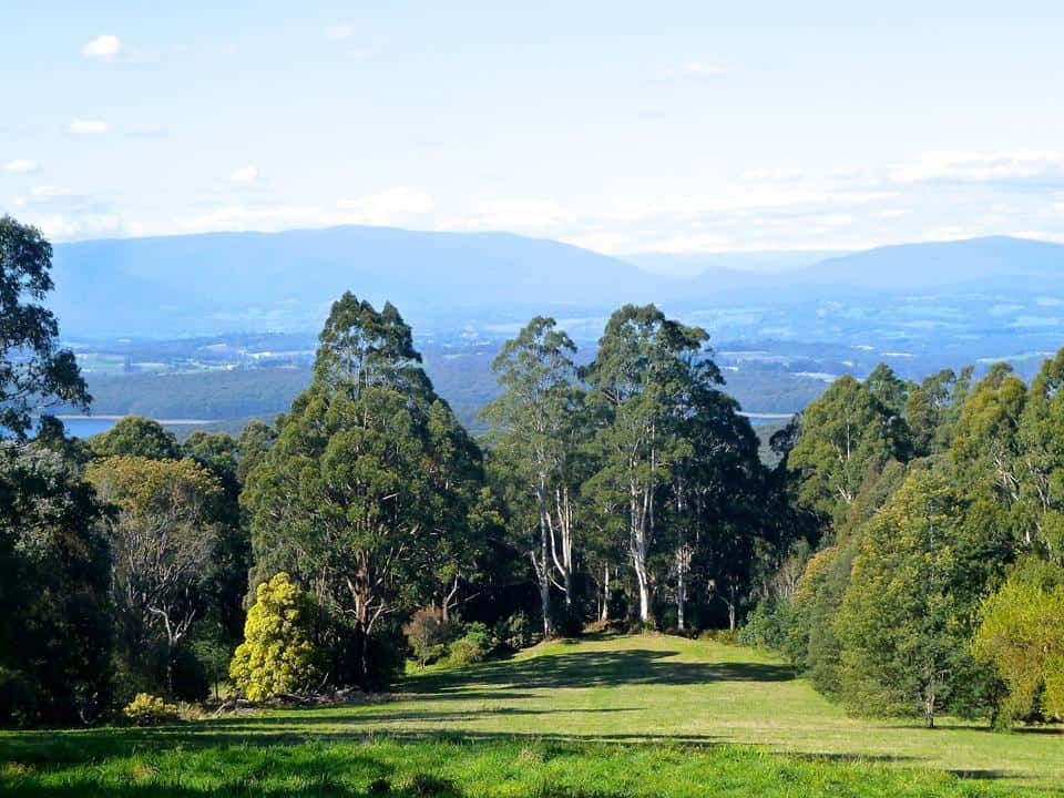 Olinda golf course