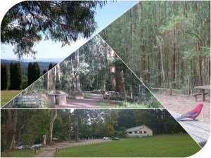 Picnic Grounds Dandenong Ranges