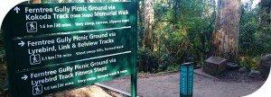 1000 Steps Kokoda Memorial Track