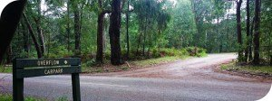 Silvan Reservoir to Mt-Evelyn