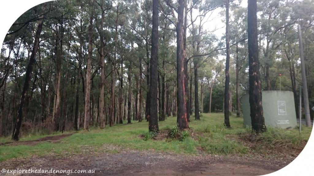Dandenong Ranges Walking Tracks