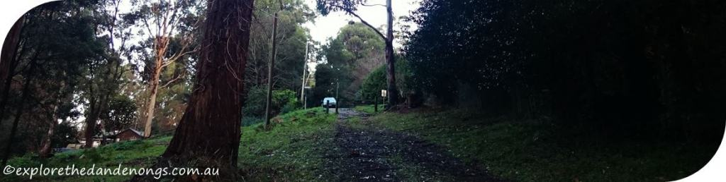 Mount Dandenong Circuit Walk