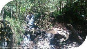 Mt-Dandenong-Circuit-Olinda-Falls
