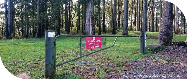 mount Dandenong Hike Trig Track