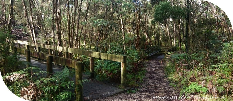 Cardinia-Reservoir-Crystal-Brook-Park.6