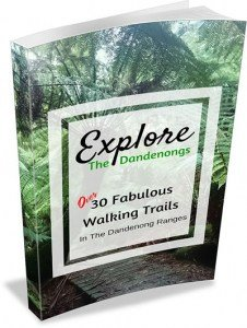 30 Walks in the Dandenong Ranges Australia