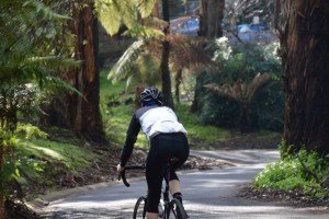 Cycling in the Dandenong Ranges