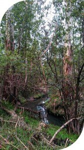 Glenfern Valley