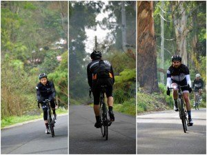 Cycling in the Dandenong Ranges, Victoria