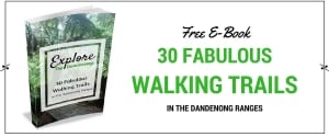 Free E-Book Walks in the Dandenong Ranges