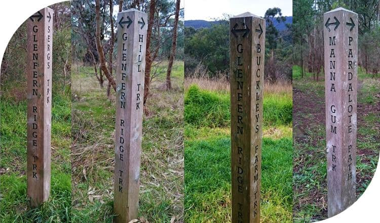 A number of paths can be used to either shorten or lengthen the walk in Glenfern Valley Bushlands, Upwey, Victoria.
