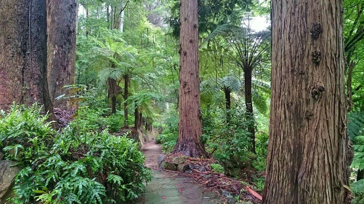 alfred-nicholas-gardens-sherbrooke-13