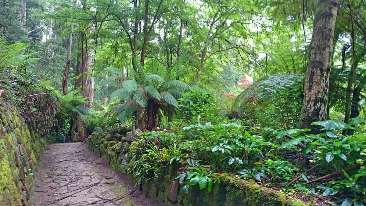 alfred-nicholas-gardens-sherbrooke-14