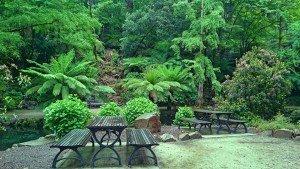 Alfred Nicholas Gardens Sherbrooke, Dandenong Ranges
