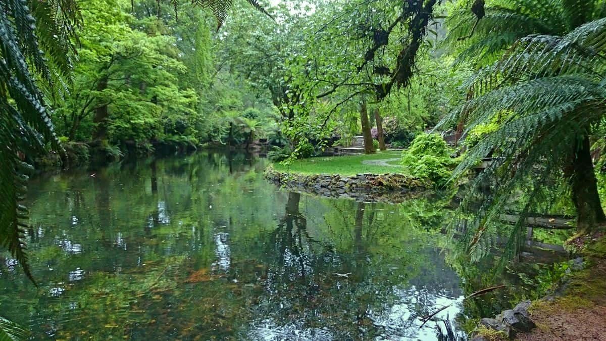 alfred-nicholas-gardens-sherbrooke-23
