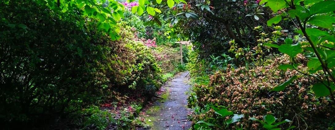 tindale-gardens-sherbrooke-11