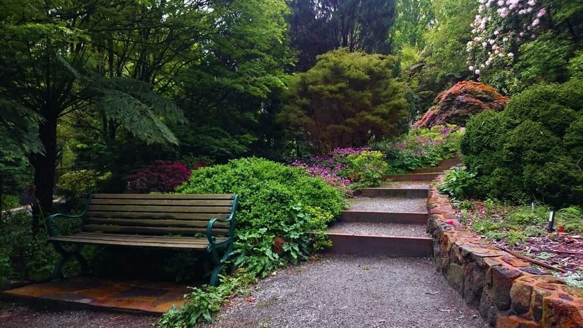 George Tindale Gardens Sherbrooke Dandenong Ranges