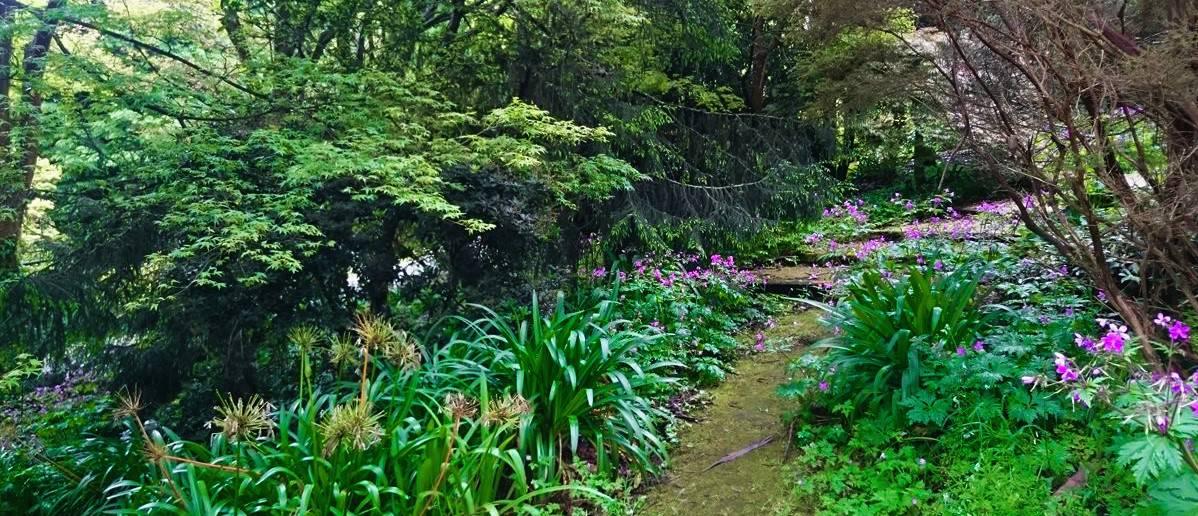 tindale-gardens-sherbrooke-25