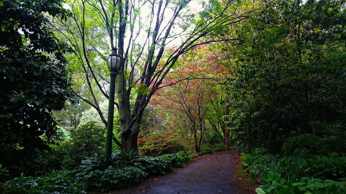 tindale-gardens-sherbrooke-34