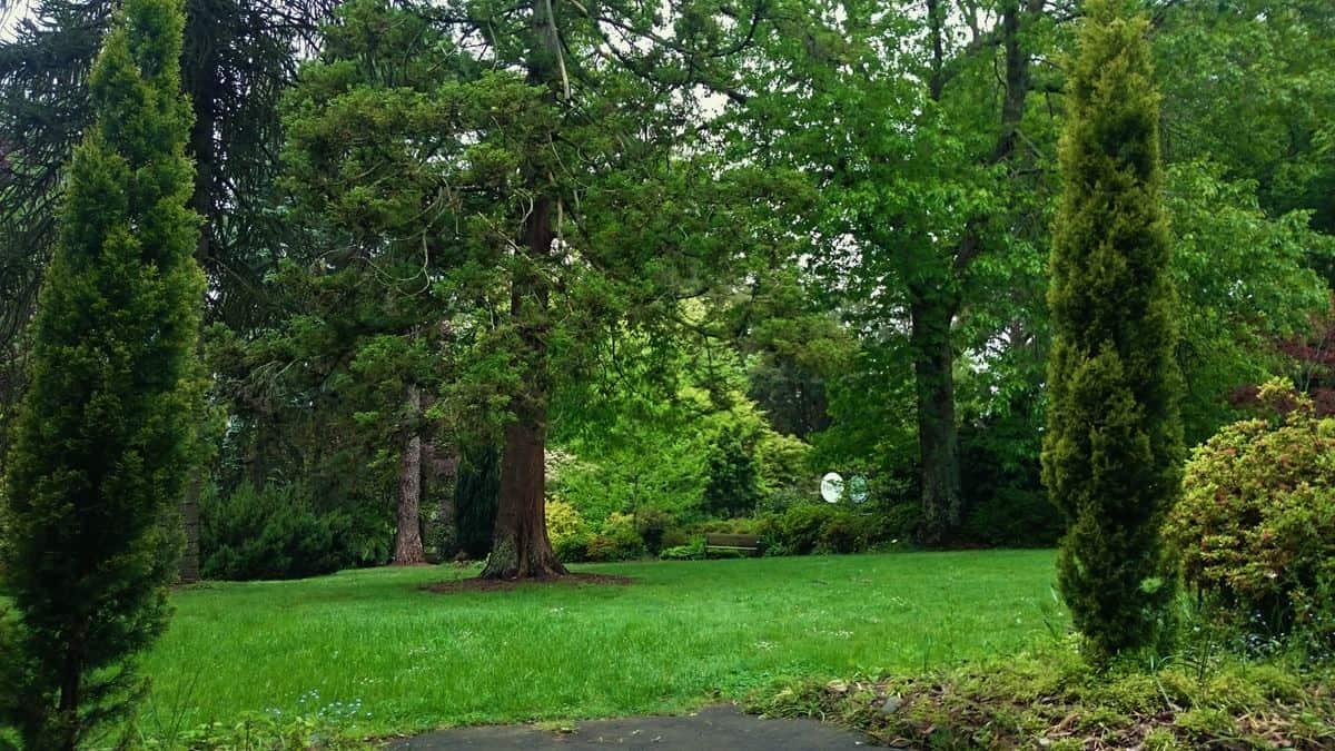 tindale-gardens-sherbrooke-37