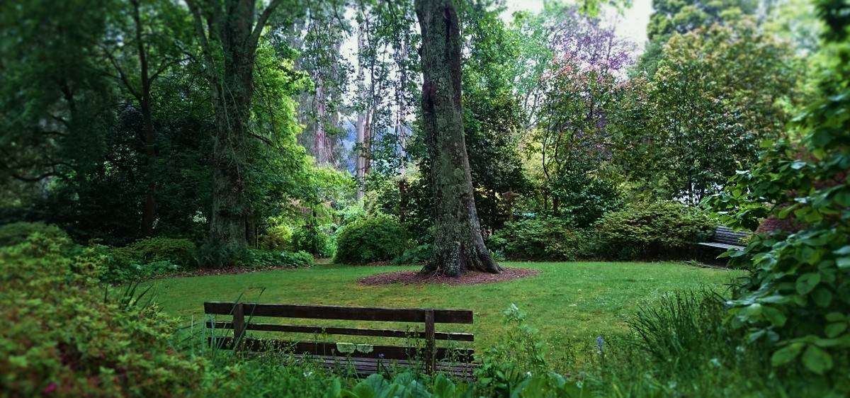 tindale-gardens-sherbrooke-39