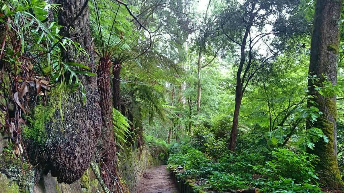 alfred-nicholas-gardens-sherbrooke-22
