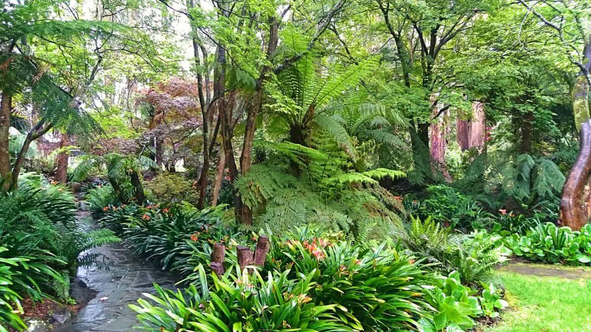 alfred-nicholas-gardens-sherbrooke-5