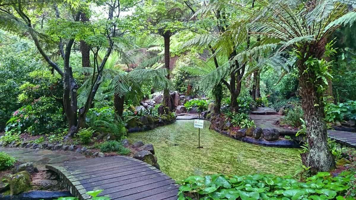 alfred-nicholas-gardens-sherbrooke-6