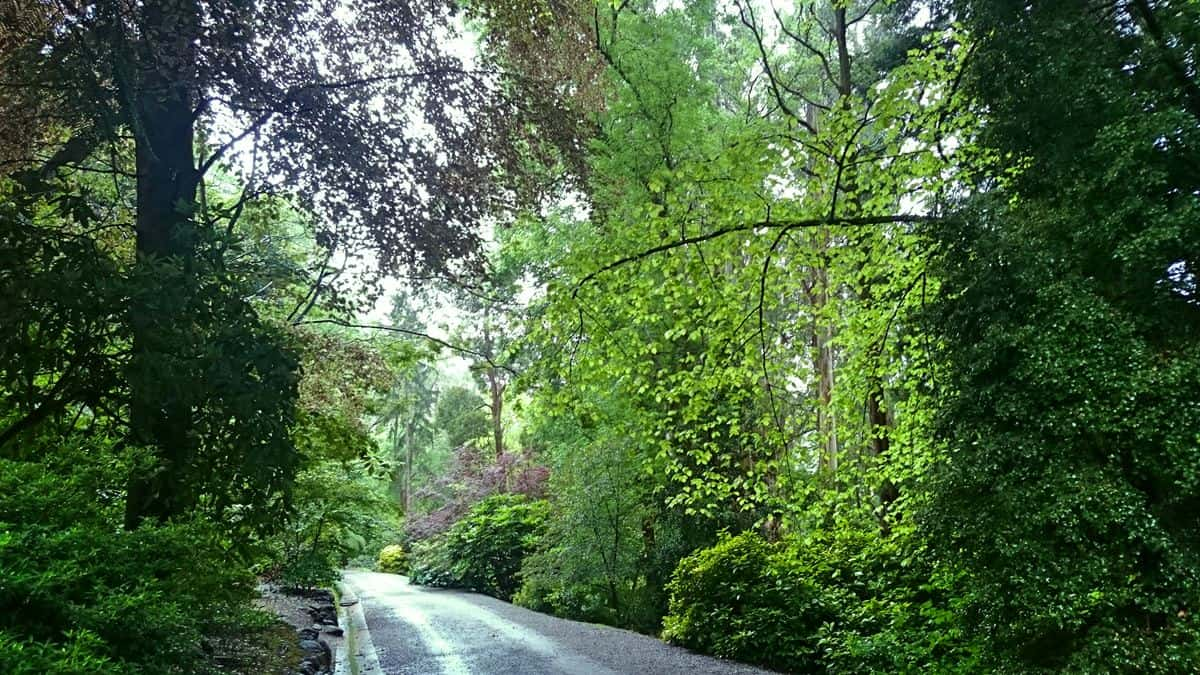 alfred-nicholas-gardens-sherbrooke-9
