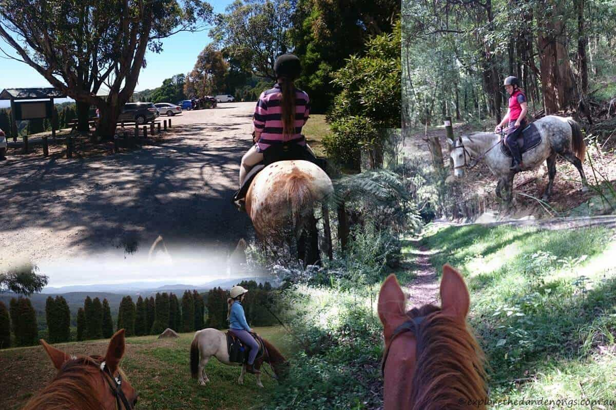 Horse riding Trails in the Dandenong Ranges