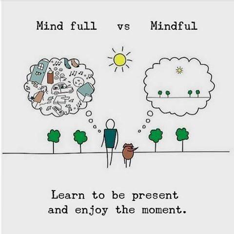 Mindful vs Mind Full
