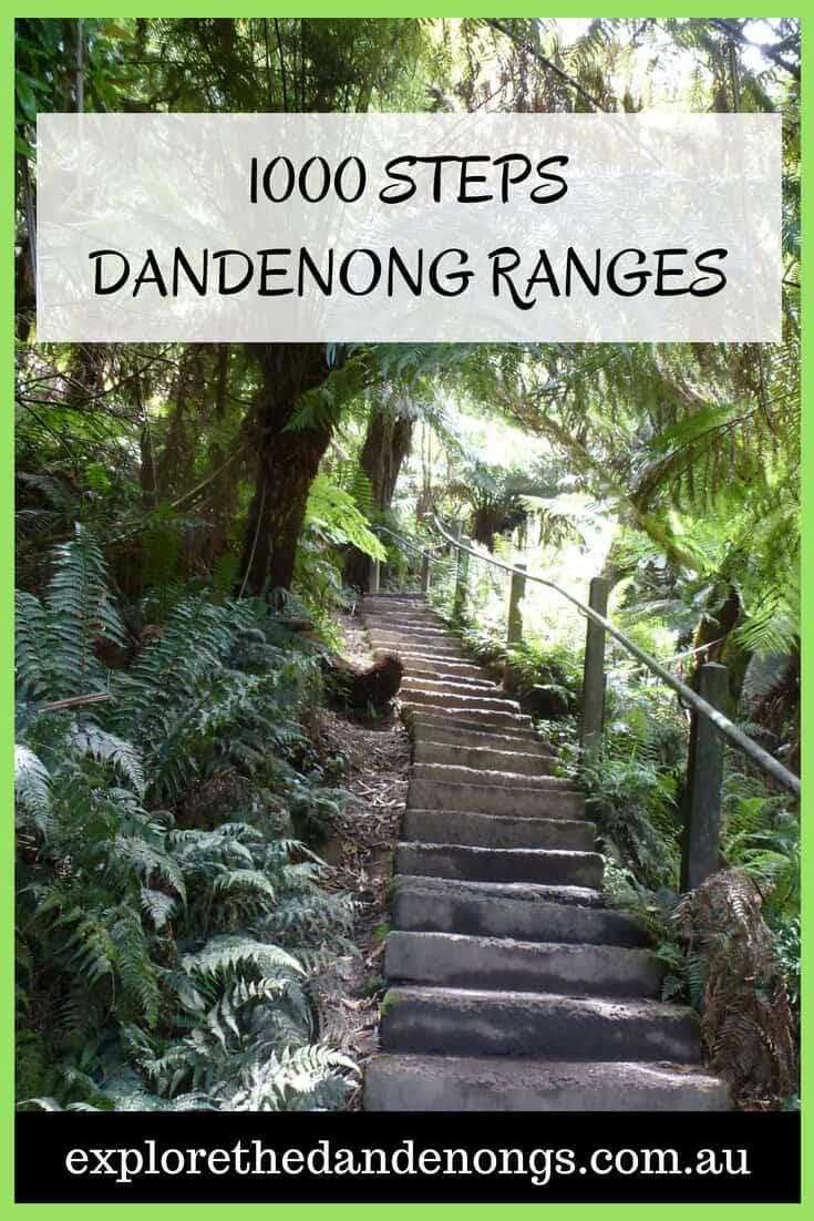 1000 Steps Dandenong Ranges Melbourne Australia